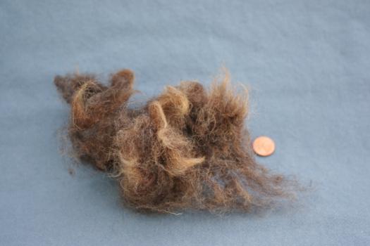 Waldschaf lamb's wool, washed